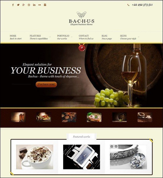 Bachus-Elegant-Business-Theme_thumb