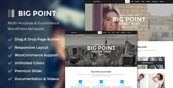 big-point-wordpress-theme