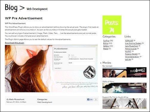 wp-pre-advertisement1