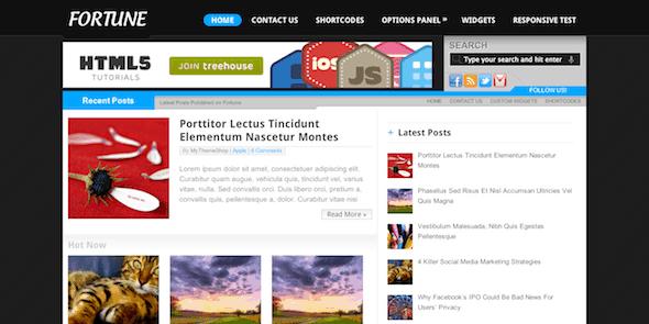 Fortune-Adsense-Ready-WordPress-Theme