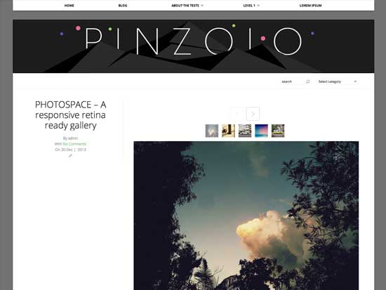 Free-WordPress-Themes-2014-pinzola