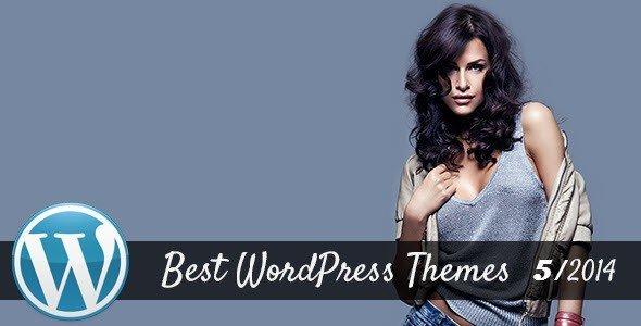 best_wordpress_themes_2014