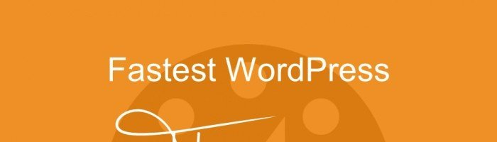 fastest-wordpress-themes