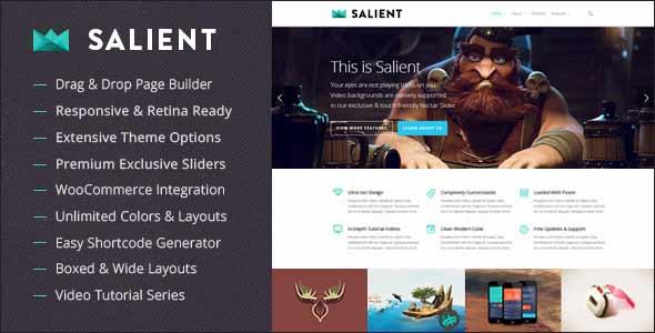 salient-responsive-theme