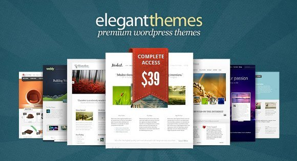 Premium-WordPress-themes-Elegantthemes