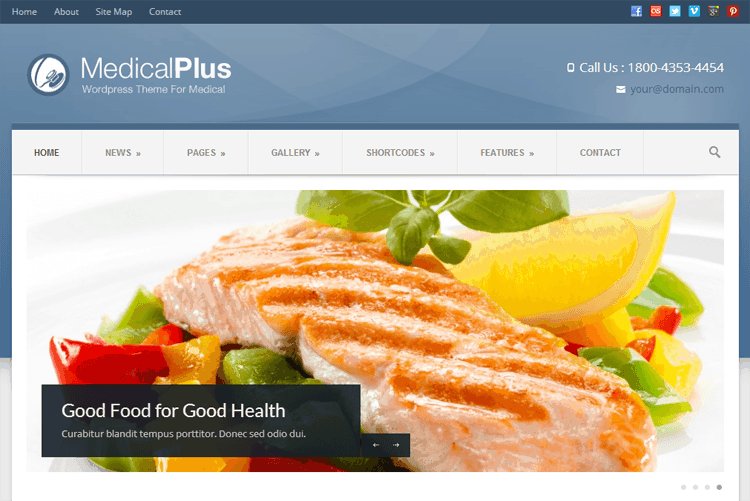 medical-plus-theme