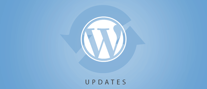 wordpress-mistakes-wordpress-updates