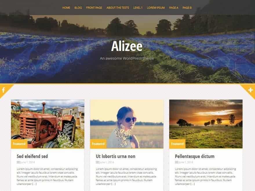Alizee-WP-Theme