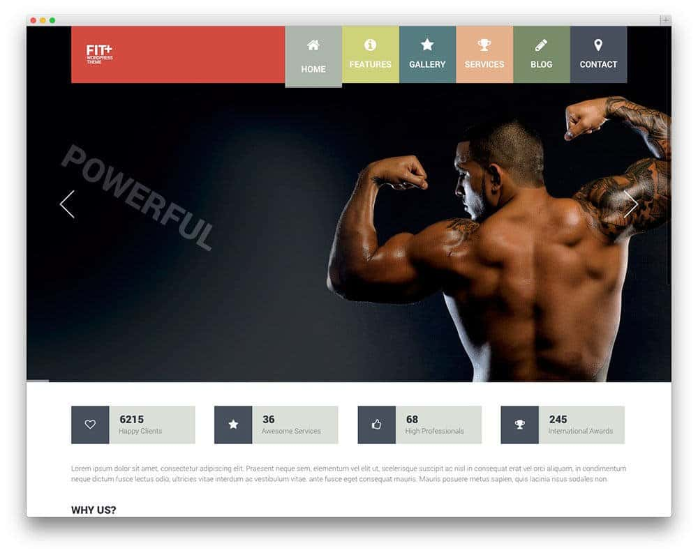 fitplus-sports-theme