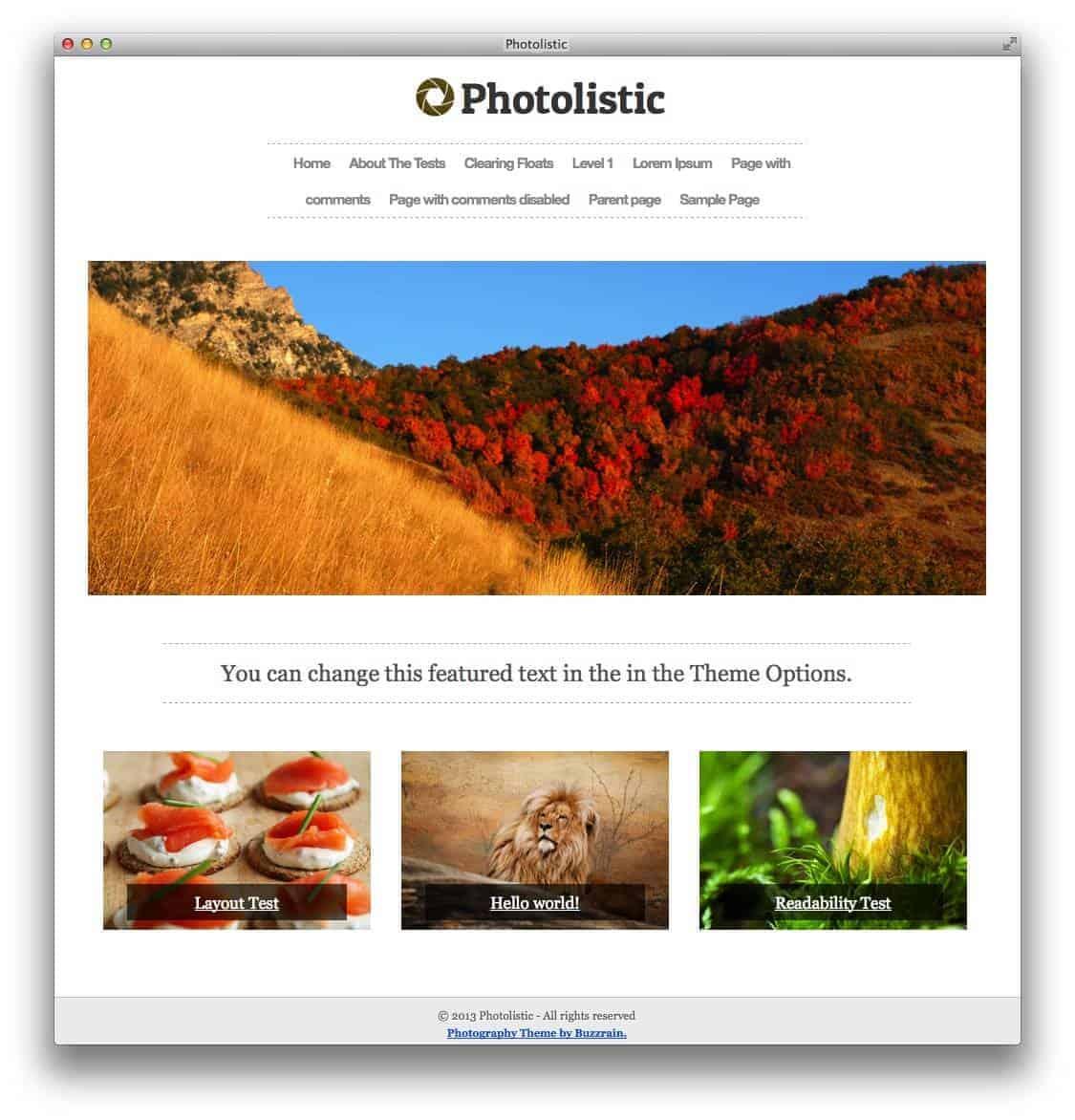 photolistic-wedding-theme