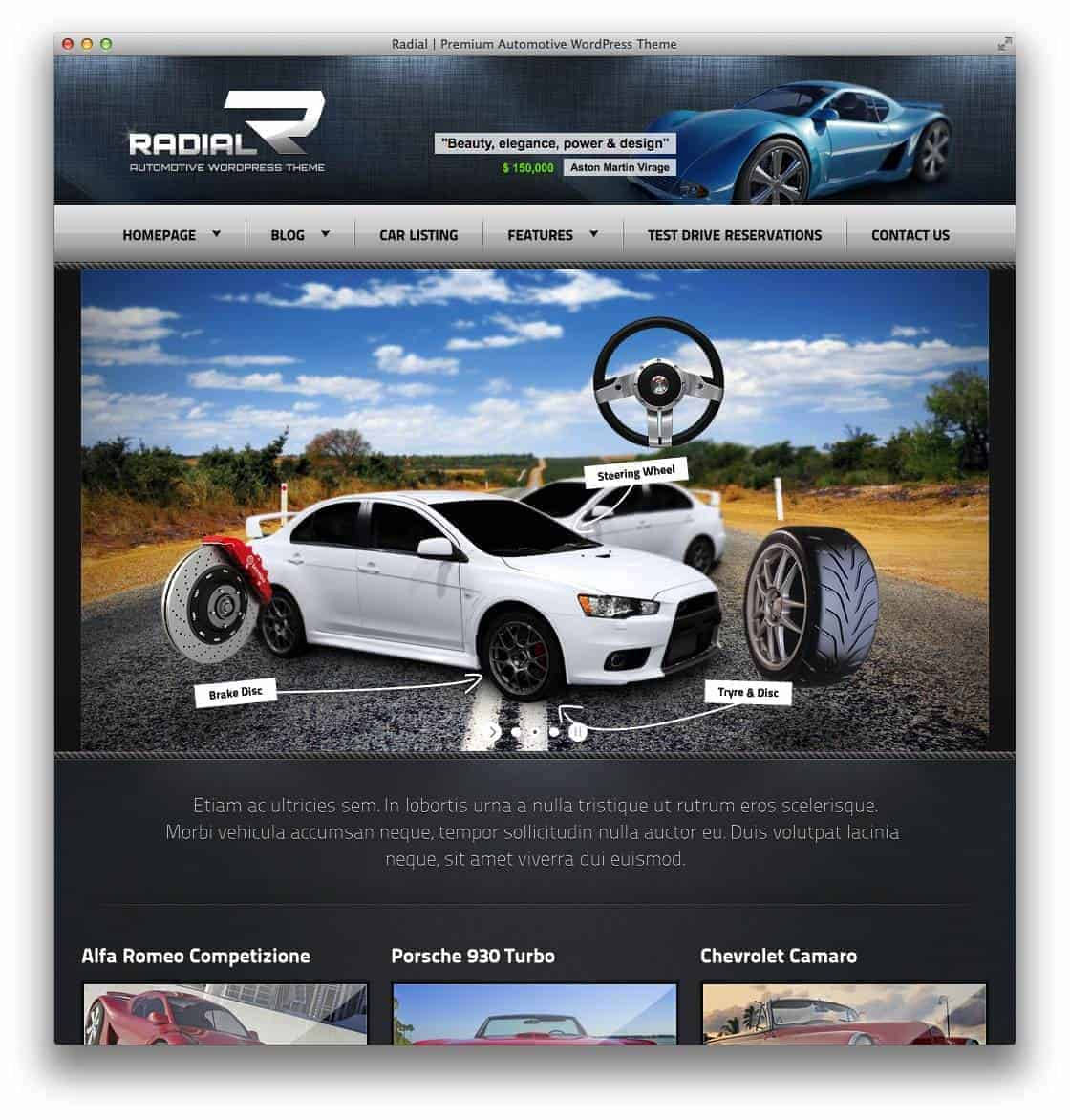 radial-wp-theme