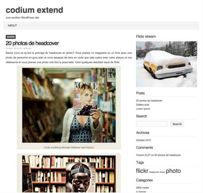 Codium-Extend-WP-Theme