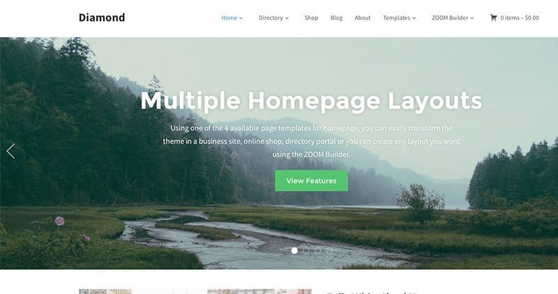 diamond-wp-theme