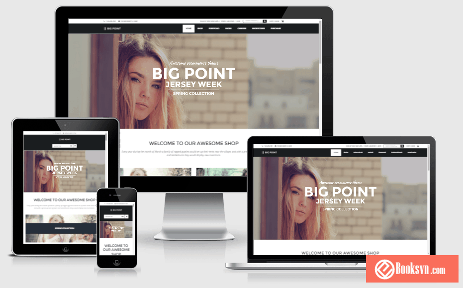 big-point-wordpress-theme