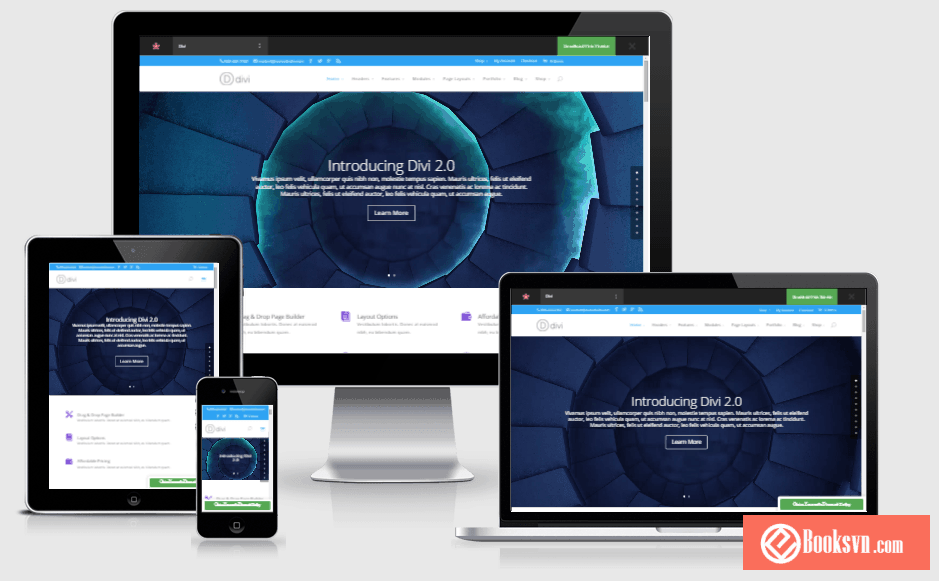 divi-elegantthemes-wordpress-theme