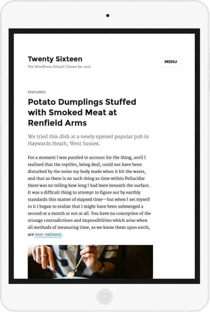 twenty-sixteen-wordpress-default-theme-13