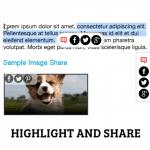 Lựa chọn và chia sẻ một đoạn văn bản bất kỳ trong bài viết