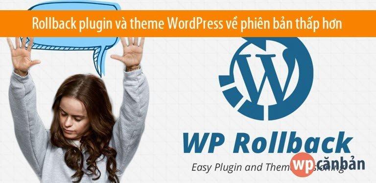 rollback-plugin-va-theme-wordpress-ve-phien-ban-cu-hon
