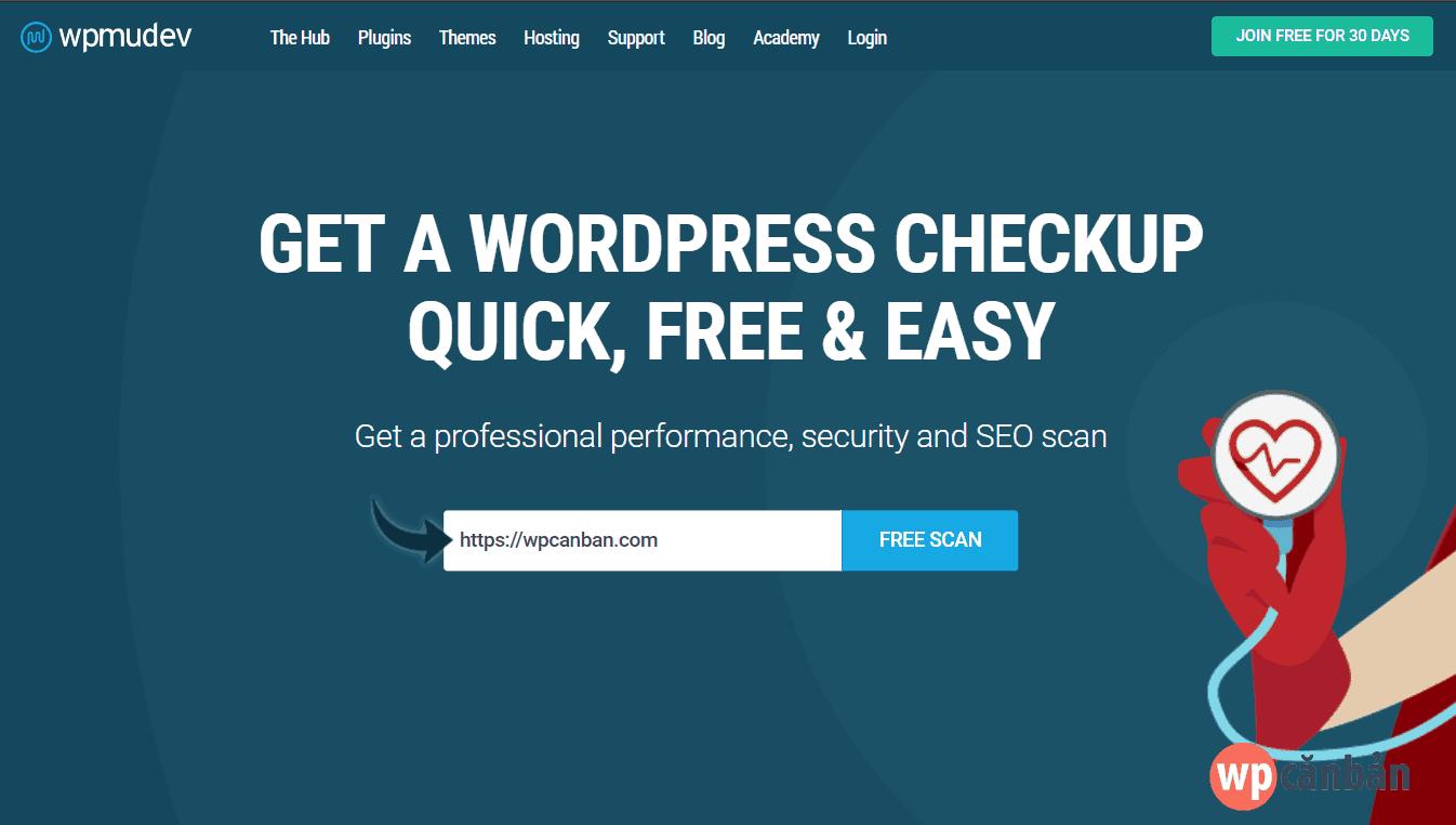 nhap-ten-mien-cua-ban-va-click-nut-free-scan