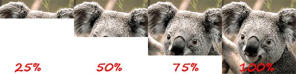 baseline-jpeg-example