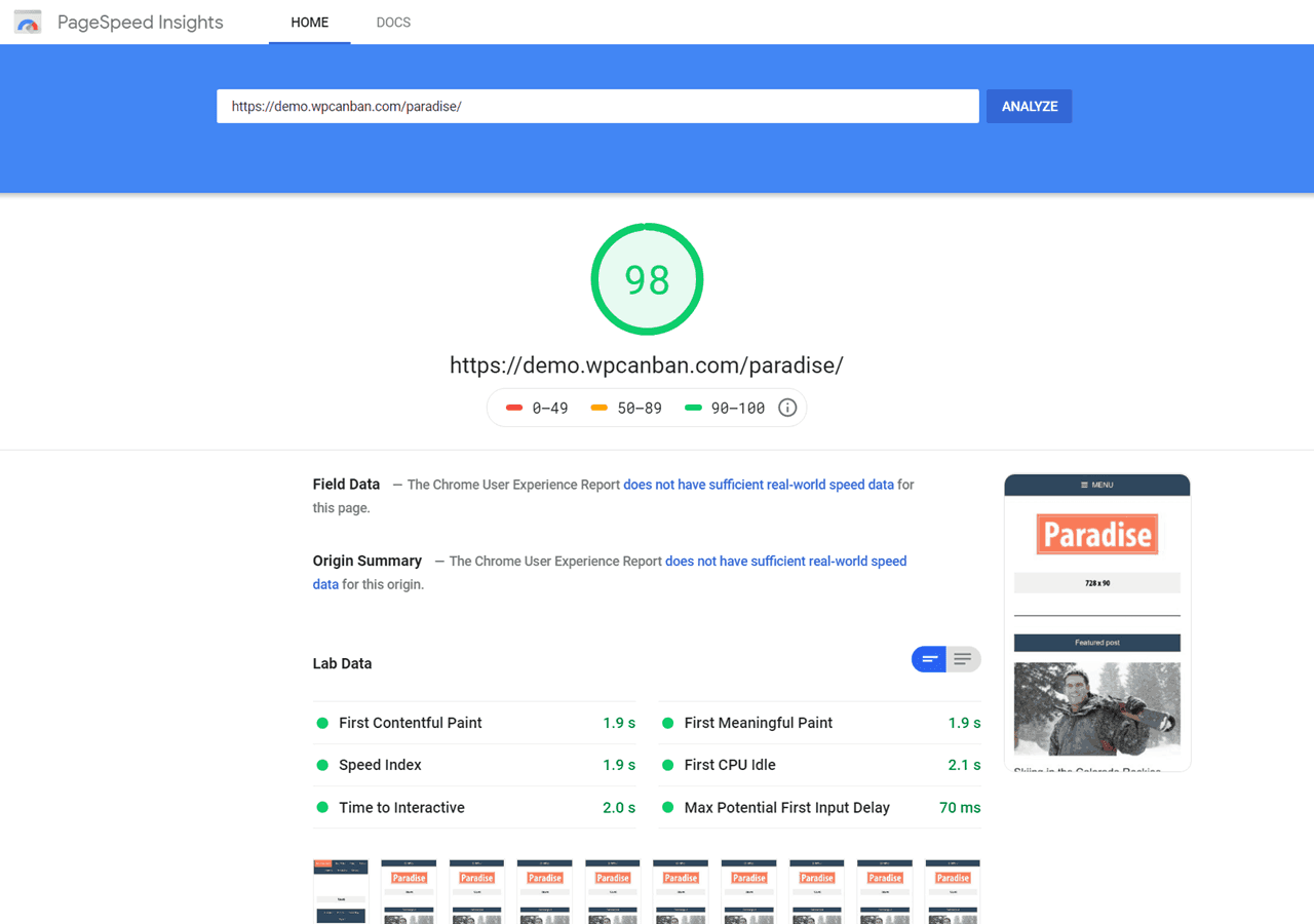diem-google-pagespeed-insights-mobile-cua-theme-paradise
