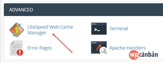 click-vao-muc-litespeed-web-cache-manager