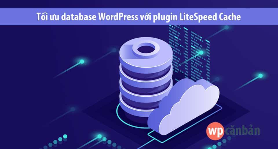 toi-uu-database-wordpress-voi-plugin-litespeed-cache